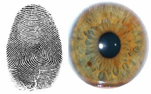 Iris Scanning Technology vs. Finger Print Scanning