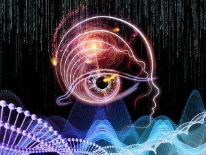 Human brain versus computer