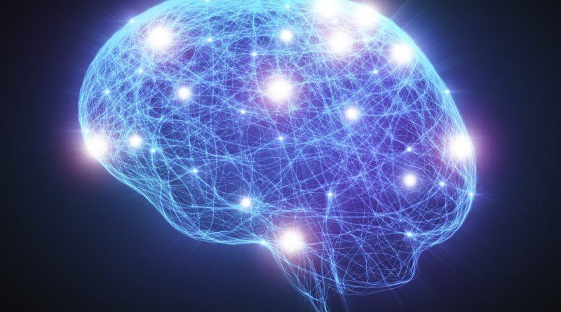 Neural Network Human Brain